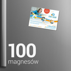 100 Magnesów na lodówkę