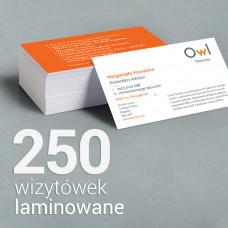 250szt wizytówki OWL Financial