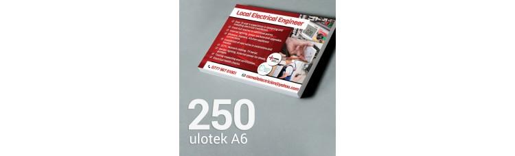 Ulotka A6 - 250 szt. Gloss/Silk
