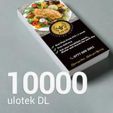 Ulotka DL - 10000 szt. Gloss/Silk