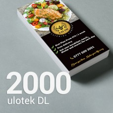 Ulotka DL - 2000 szt. Gloss/Silk