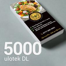 Ulotka DL - 5000 szt. Gloss/Silk